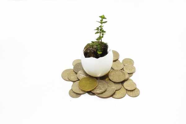 Kredyty bez bik Zduny  zawnioskuj i wyślij sms o treści: WNIOSEK na 7393 (3.69 zł za sms)